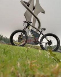Jolta Electric Cycle
